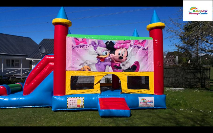 Minnie castle for hire